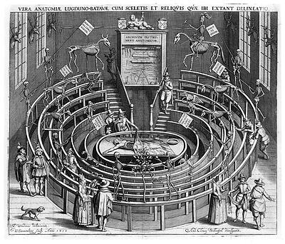 Anatomical_theatre_Leiden.jpg
